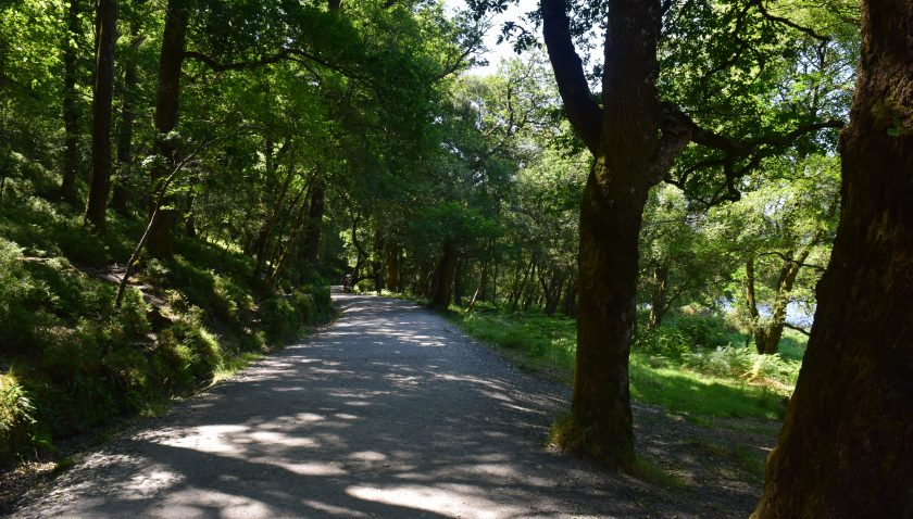 Walkways are in good condition in Glendalough