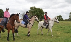 Claremorris Equestrian Centre