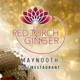 Red Torch Ginger,  Maynooth, (01) 531 0022